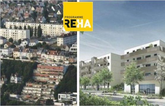 Photo Article REHA 3 -2